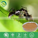 10:1,polyphenols,Formic acid/black ant powder