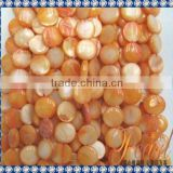 Hot Sell Orange Color Round Shell Strands SP1302
