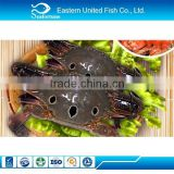 Seafood Export Wholesale Frozen Three Spot Crab