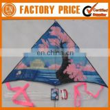 Advertising Logo Custom Cheap Stunt Kites