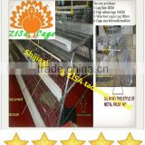 chicken cage for sale /chicken farm build cage equipment