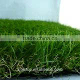 turf grass for gardens with 4 tones & for wedding decoration