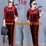 Factory Wholesale woman gold velvet sportswears