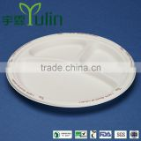 disposble 100% biodegradable sugercane bagasse tableware                                                                         Quality Choice