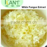 high quality dried Tremella/ white fungusc /Snow Fungus
