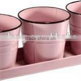 Pink Set of 4 Small Pot & Watering can/Holiday Gifts/Small Galvanized Metal/Garden Metal Flower Pot/Planter with black rim