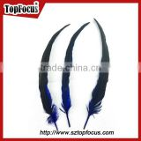 lower prices artificial dyed rooster coque tail wholesale feathers types