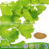 Hot Selling Ginkgo Biloba Extract Liquid --NutraMax Supplier