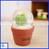 resin cactus potting decoration