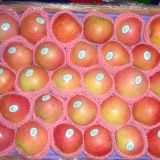 Chinese Qinguan apple