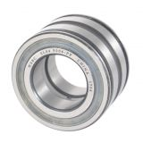WSBC Sealed double row full complement cylindrical roller bearings SL04 5018 PP