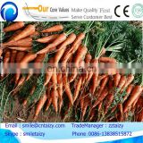 multifunctional easy operating carrot harvester machine