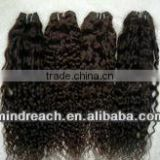 Top quality 16'' 2# spring curl 100% India remy hair weft accept paypal