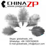 ZPDECOR No.1 Supplier in China Factory Exporting Bulk Sale Good Dark Gray from 6inch to 8 inch Ostrich Feathers