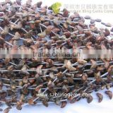 Wholesale popular Red Leopard Skin gemstone jewelry Bird shape carving loose beads