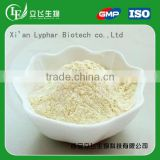 Lyphar Supply Top Quality Bitter Apricot Seed Powder