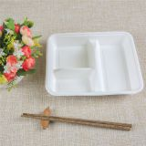 6 Rectangle compartment sugarcane lunch tray
