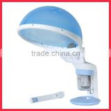 New 2 In 1 Portable Facial and Hair Steamer Beauty Device