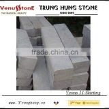 Vietnam Bluestone Skirting