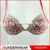 Ladies Bra Photos New Model Bra Woman