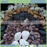 mixed multicolor beach pebble with polished