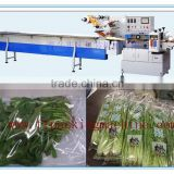 Multi-Function Automatic Vegetable and Fruit Packing/ Wrapping Machine/Horizontal Flow Packaging Machine