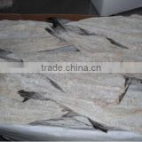 Dried salted cod fish herring