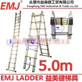 5 M Magic Telescopic Aluminium Step Ladder with EN131 Approval