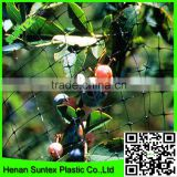 Supply 2016 100% virgin pe extruded knotless with UV stabilized Black garden bird netting for blueberry bushes
