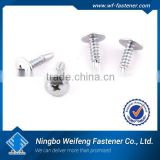 Ningbo WeiFeng high quality low price many kinds of fasteners anchor, screw, washer, nut ,bolt belt buckle screws