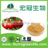 100% Natural 2013 High Quality Qinghai Goji Berries Extract