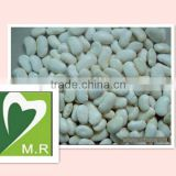 Natural herb plant High quality Manufacturer Natural White Kidney Bean Extract 1% Phaseolin