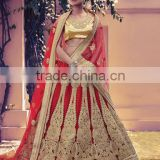 Acute Red Net Lehenga Choli/fancy lehenga choli/Lehenga Choli Wholesaler In India
