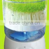 100% Organic Hydrocirculating/Ozone generator/Automatic Bean Sprout/Sprouting/Sprouter Machine