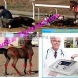 veterinary medical shock wave therapy equipment shockwave equine Equine Shock Wave Therapy machine
