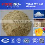 High Quality high protein organic soluble vital wheat gluten bulk Manufacturer