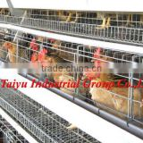 TaiYu factory full automatic battery cage system in poultry