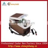 6L Mini car beer and beverage refrigerator,desktop mini fridge,custom beer mini fridge