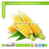 Hot Sale Sweet Corn oil Flavor for candy
