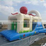 Customize Amusement PVC Inflatable Air Jumping Bouncer Castle