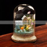 Wholesale glass cloche bell jar for decoration
