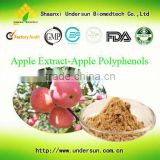 High quality natural 100% apple peel extract powder