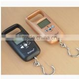 DIHAO Tech 10kg/5g 50kg/10g Digital Electronic Double Precision Weight Hook Hanging Scale