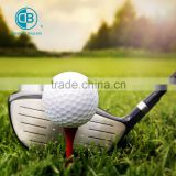 water Soluble Golf Ball