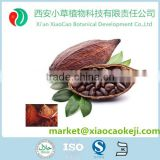 Organic Cultivation Type Green Coffee Beans/Cocoa Bean/Cocoa Extract Powder