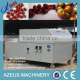 Industrial Fruit Pitting Machine/Plum Pitting Machine