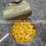 canned 340g sweet corn manufacture wholesale price