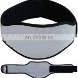 Ripe Neoprene Curved Weight Lifting Silver Belt