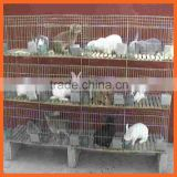 Bearing Cheap Galvanized Welded Farming Rabbit Cage Wire Mesh