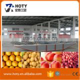 vegetable washing sorting machine/fruit washing waxing production line